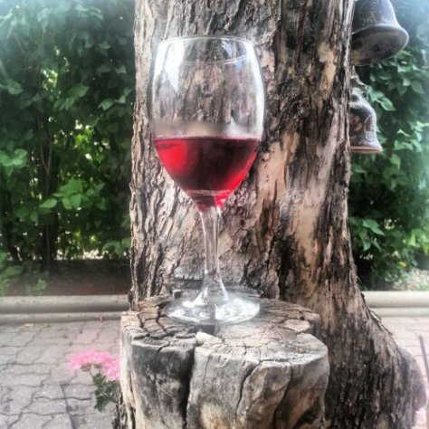 Enjoyed a nice glass of wine last night outside in our backyard.