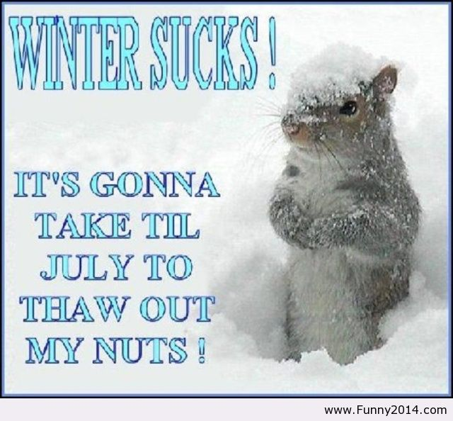 ... I Hate Winter Quote